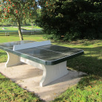 picture of table tennis table