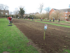 image of sowing field