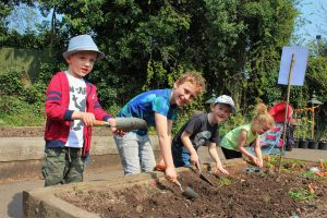 Children digging in earth